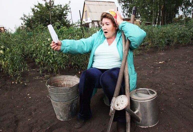 Налог на огород в 2019 году: дачникам и садоводам нужно платить или нет, сколько, правда или нет