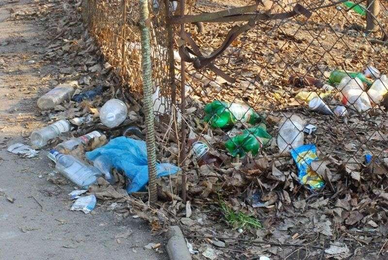 У Россиян хотят забирать землю за нескошенную траву и мусор