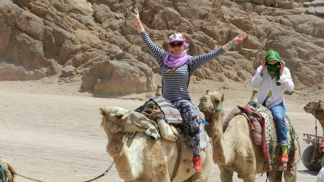 Когда откроют полеты в Египет в 2019 году