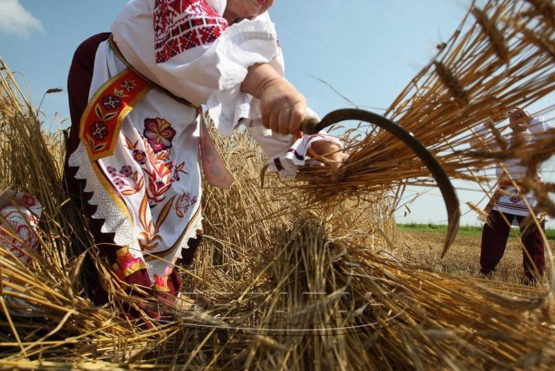 Какой церковный праздник сегодня 20 июля 2019 чтят православные: Авдотья Сеногнойка 20.07.2019