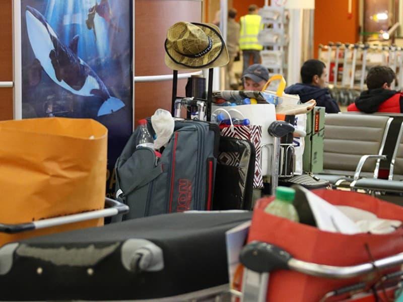 Проблемы с багажом в Шереметьево: когда наладят, какая сейчас ситуация