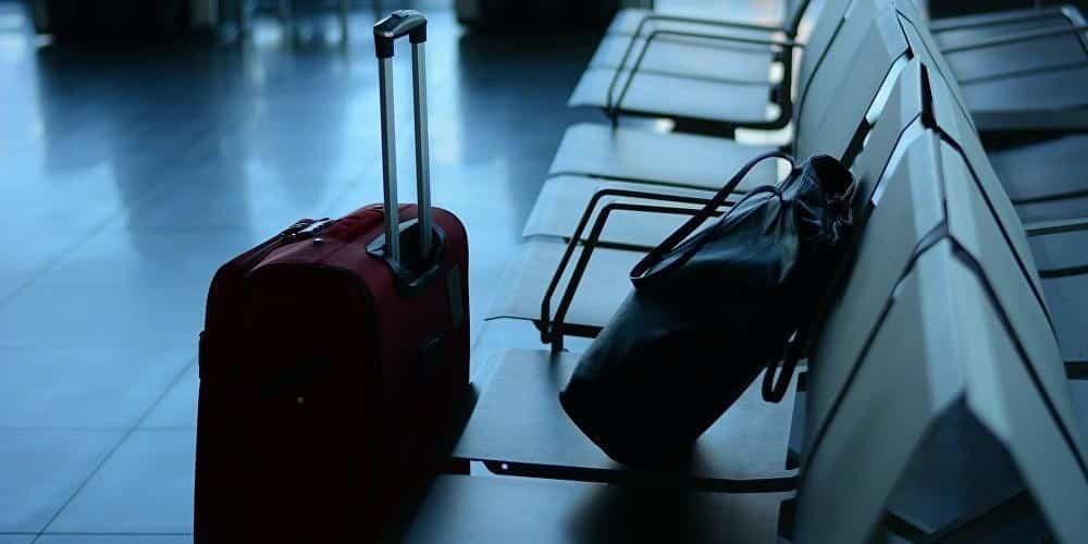 Новые правила перевоза багажа через границу в России: как провозить овощи, фрукты и цветы. Закон приняли или нет