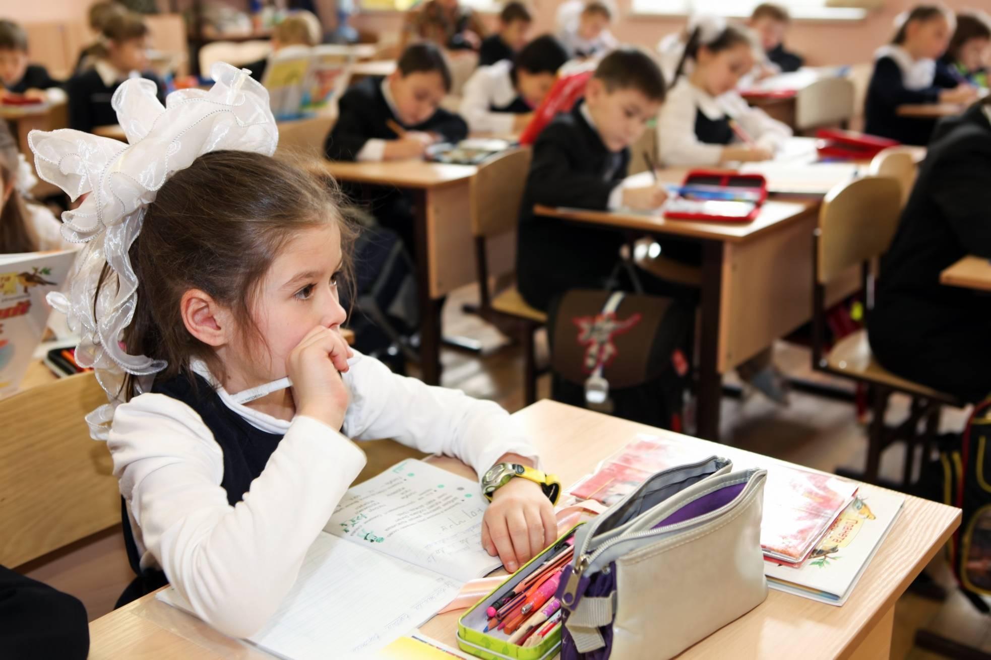 Платные предметы с 1 сентября 2019 в школах России: слухи или нет