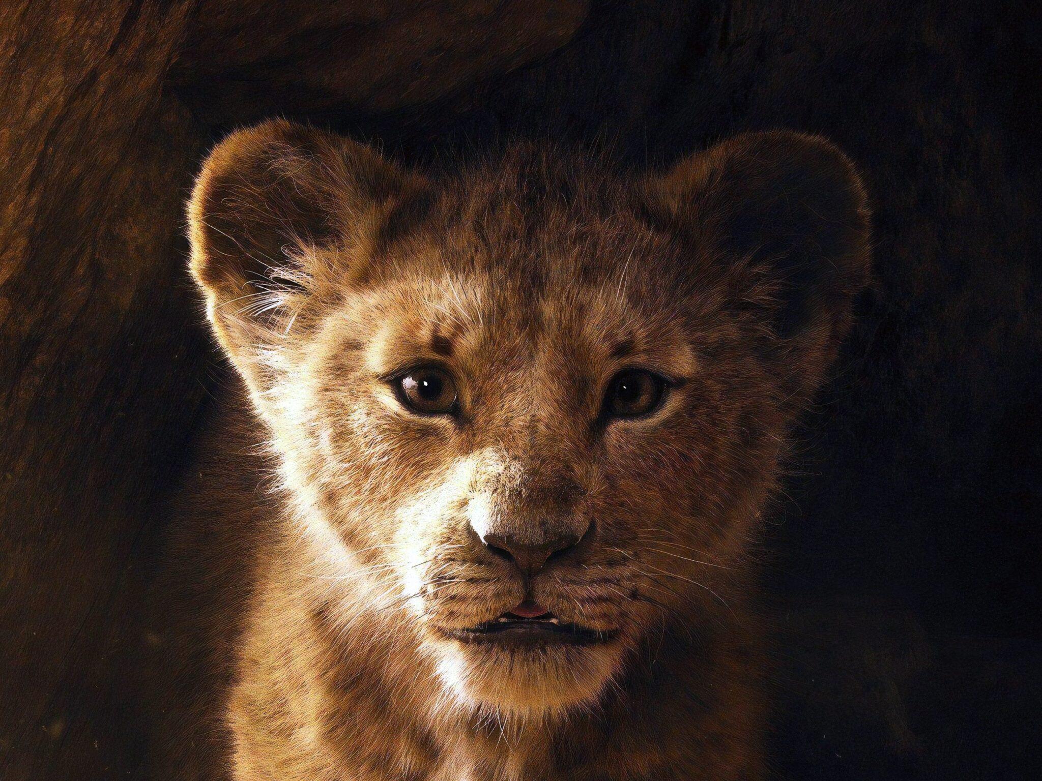 Король лев 2019: когда премьера фильма. Новый трейлер с саундтреком Бейонсе