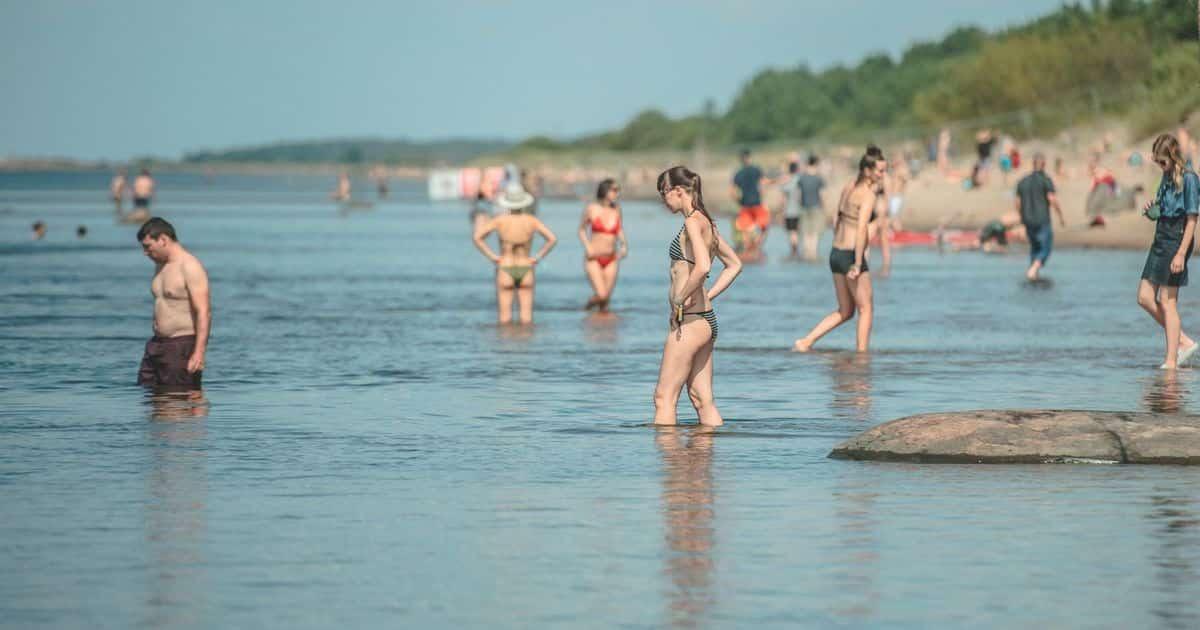В Балтийском море обнаружили опасную бактерию: опасна или нет