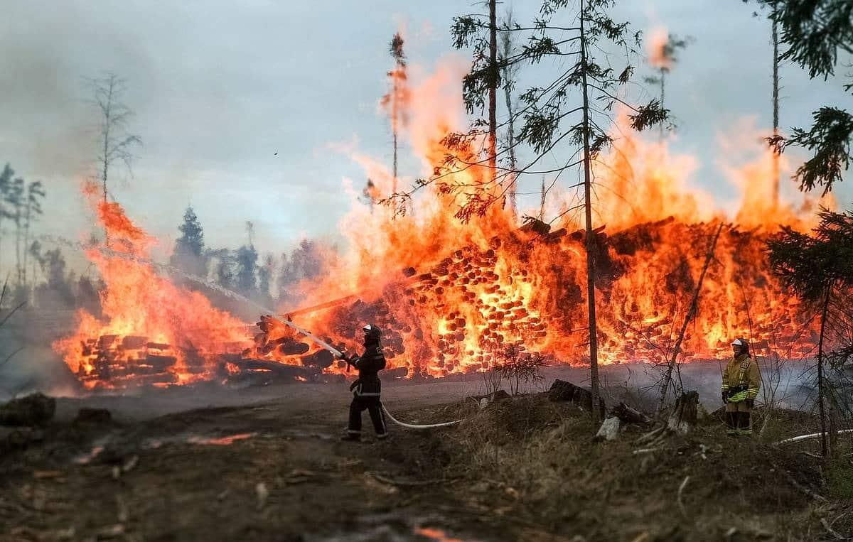 Пожары в Сибири август 2019: как обстоит ситуация сегодня, огонь распространяется на новые территории