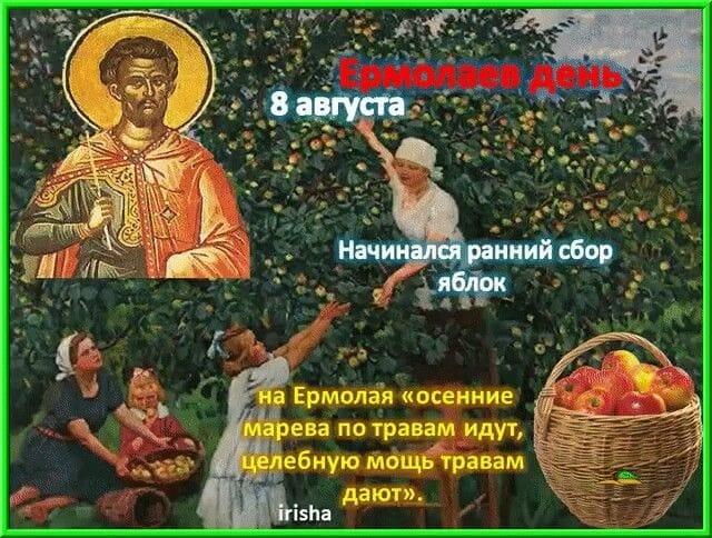 8 августа 2020 Ермолаев день по церковному календарю