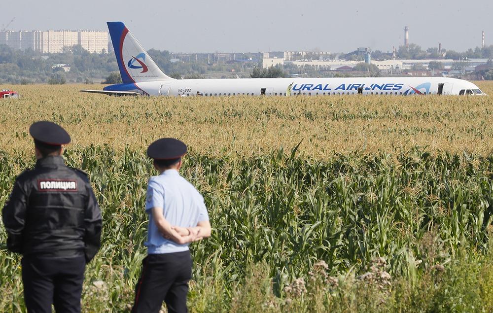 Посадка самолёта А321 на кукурузном поле: почему пилот Дамир Юсупов герой