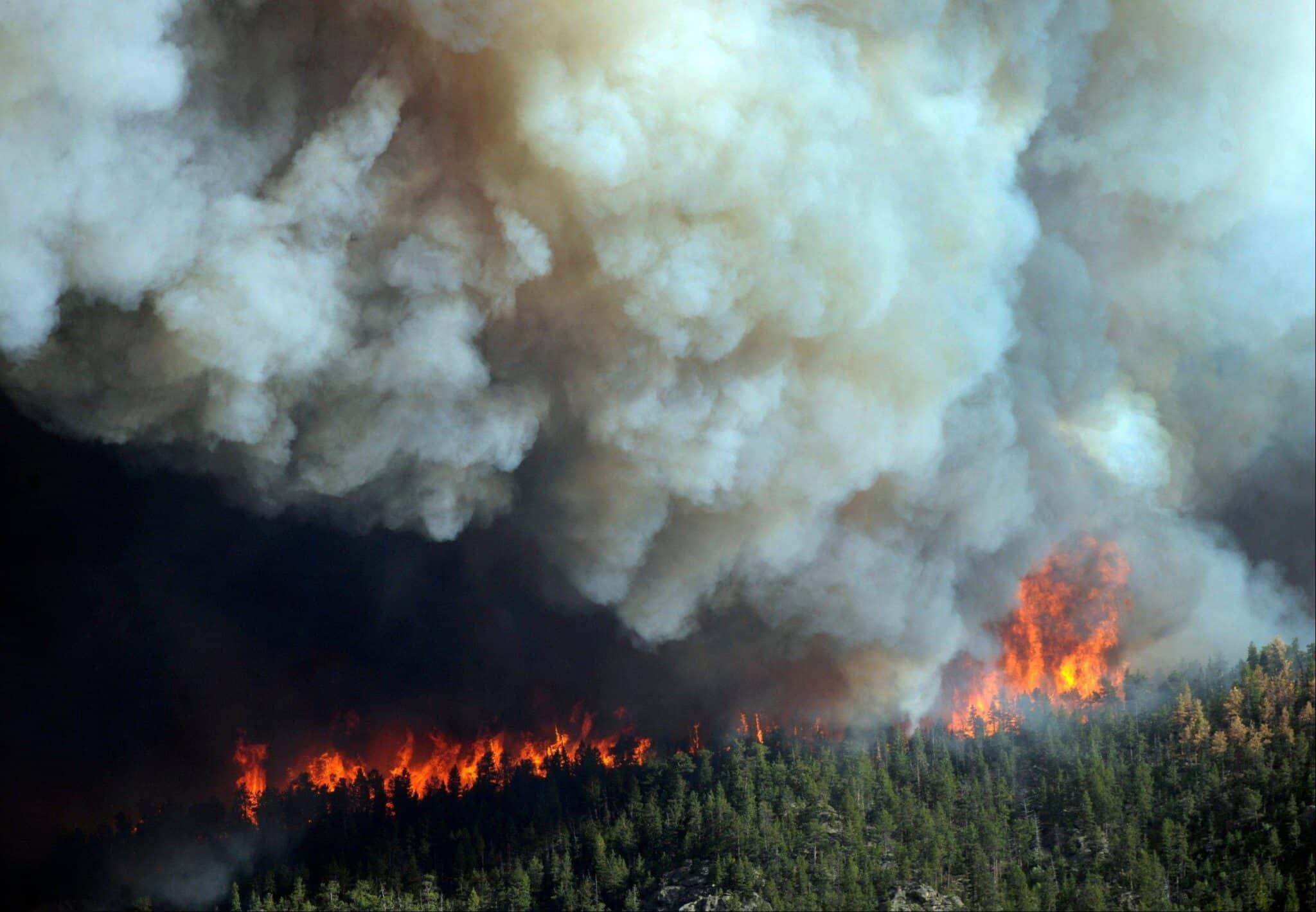 Может ли дым от сибирских пожаров дойти до Москвы: причины пожаров в Сибири