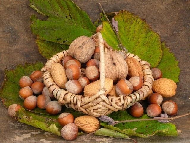 Ореховый Спас: когда, какого числа отмечают в 2019 году, традиции, приметы