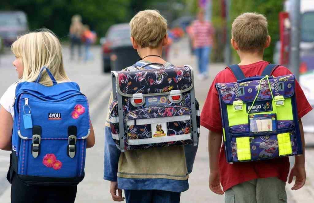 Нормативы веса школьного рюкзака: данные от Роспотребнадзора