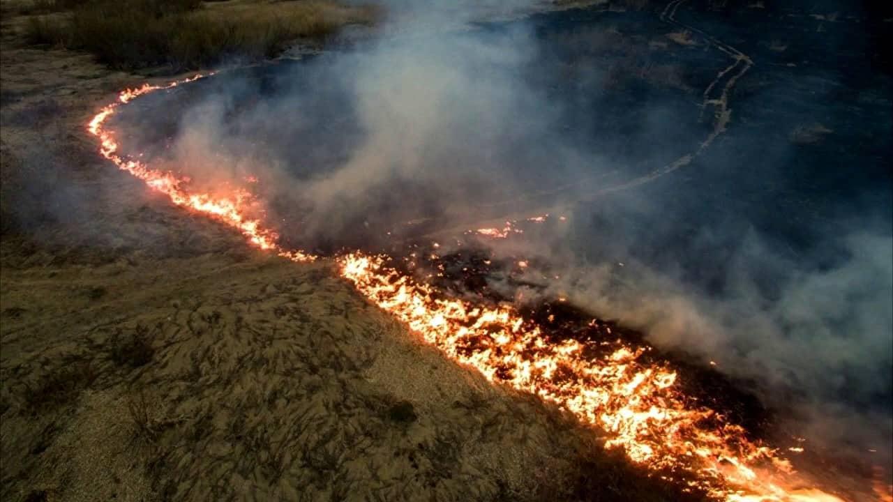 Пожары в Сибири, последние новости: когда потушат, МЧС не справляется со всеми очагами возгорания