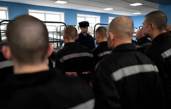 Амнистия в 2019 году: по каким статьям, какие заключенные никогда не попадают под амнистию