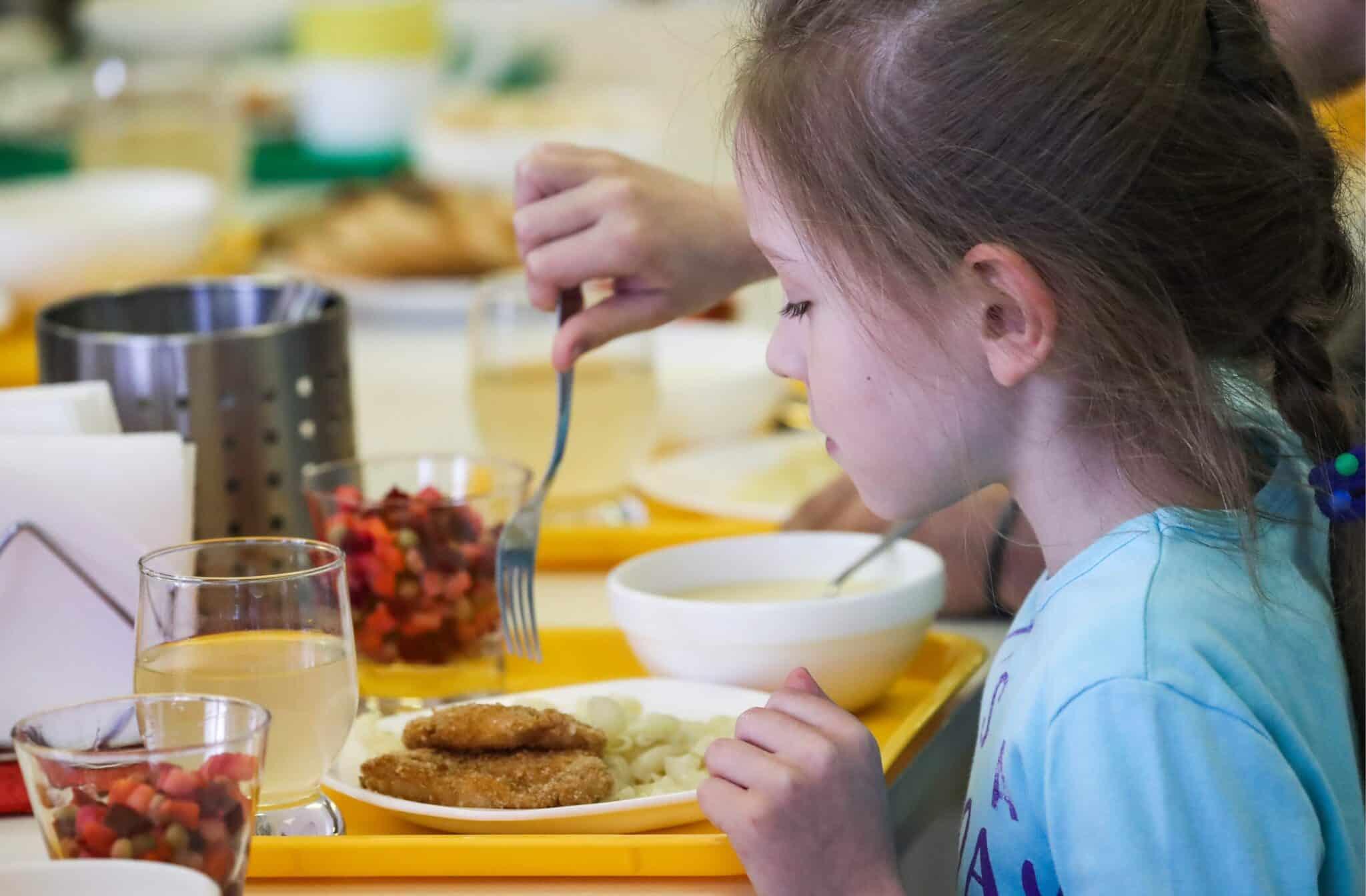 Закон о школьном питании в 2019 году: запрет приносить еду в школу, бесплатное питание для начальных классов