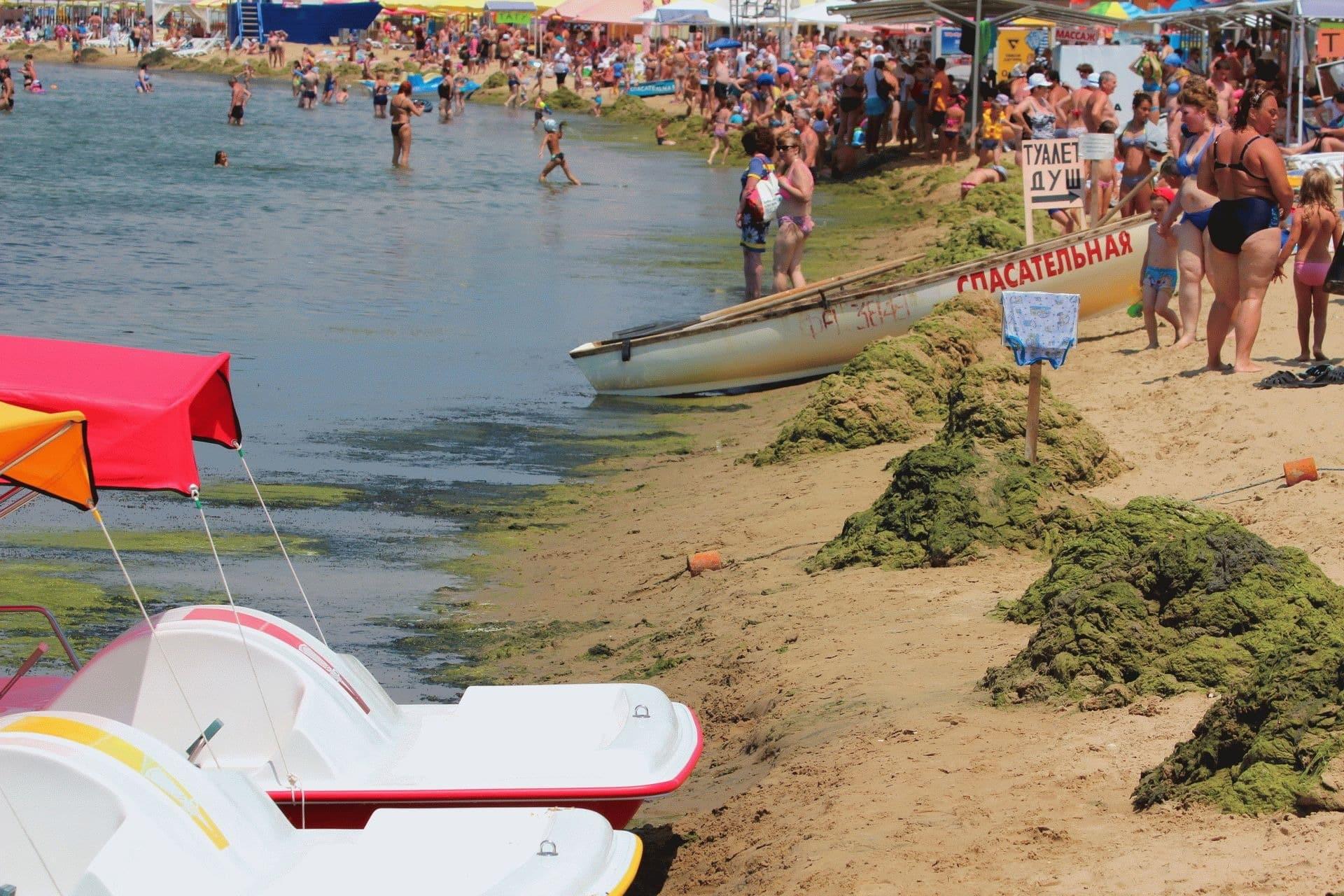 Море в Анапе цветёт в августе 2019 или нет: можно ли купаться в период цветения моря