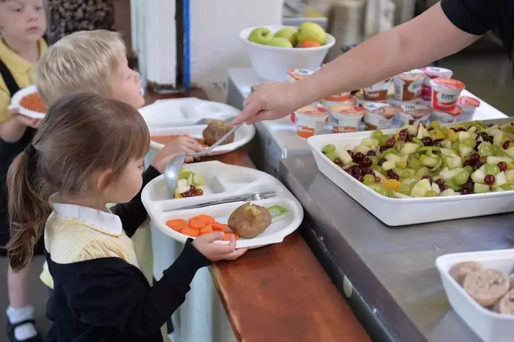Закон о школьном питании и запрет на домашнюю еду в школах