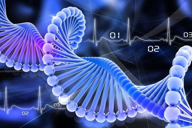 Может ли рак передаваться по наследству: от родителей детям, какой ген передает рак, последние исследования