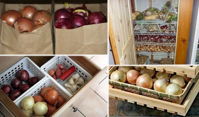 Репчатый лук в домашних условиях: как правильно хранить. Как сохранить репчатый лук на собственной кухне