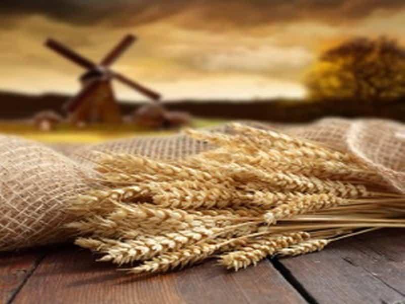 Какой церковный праздник сегодня 3 октября 2020 чтят православные: Астафий Ветряк отмечают 3.10.2020
