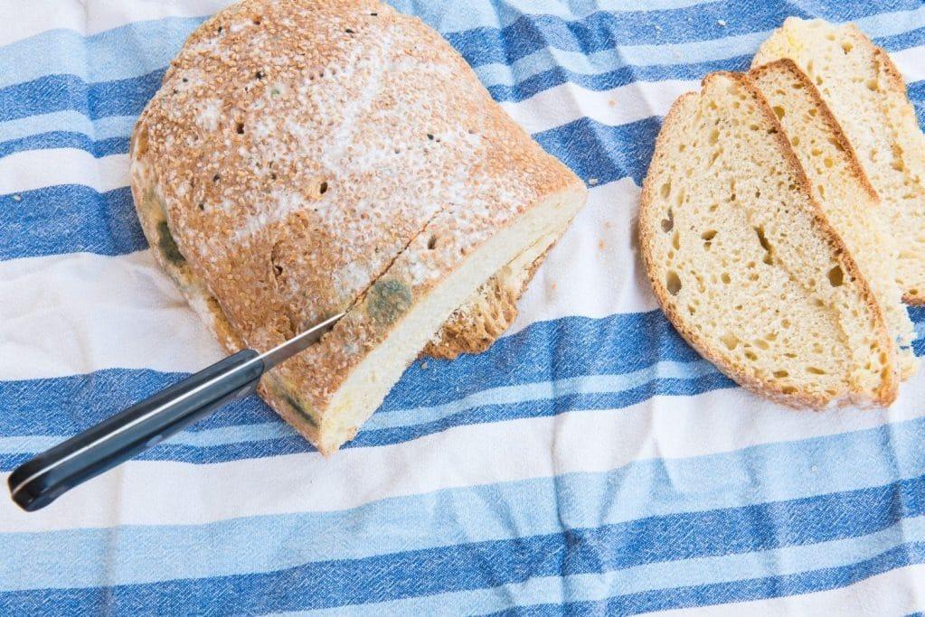 Если съесть хлеб с плесенью опасно или нет: последствия, как реагирует организм на употребление плесени