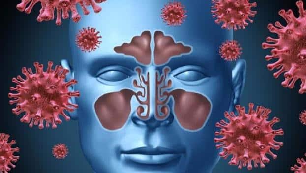 Миллионы россиян в зоне риска: новый вирус гриппа смертельно опасен