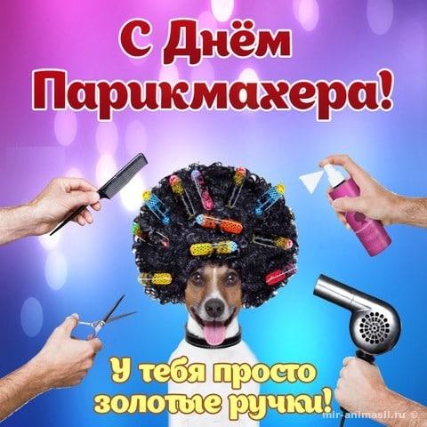 День парикмахера в 2019 году: дата когда отмечается, как празднуют, как появилась профессия парикмахер