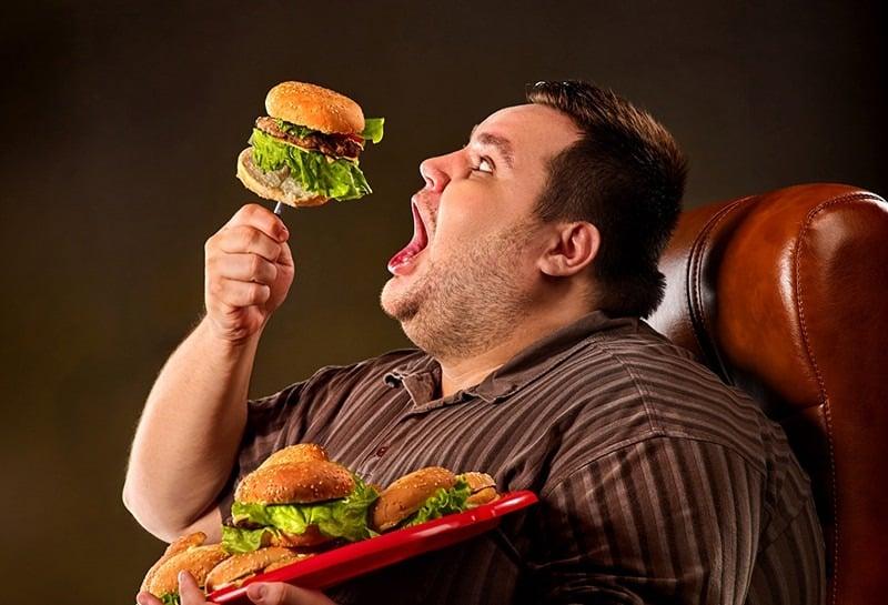 Почему хочется есть жирную пищу: потребность организма в жирах, на какие продукты можно заменить жир