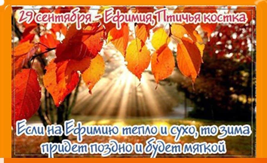 Какой церковный праздник сегодня 29 сентября 2020 чтят православные: Ефимия, Птичья костка отмечают 29.09.2020