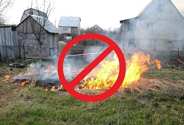 В МЧС рассказали, можно ли избежать штрафов за сжигание мусора в 2019 году: правила сжигания мусора на участке