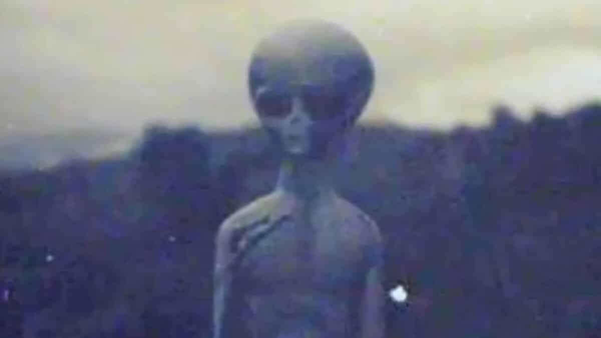 Видео НЛО в 2019 году: Американские власти официально признали случаи столкновения с НЛО