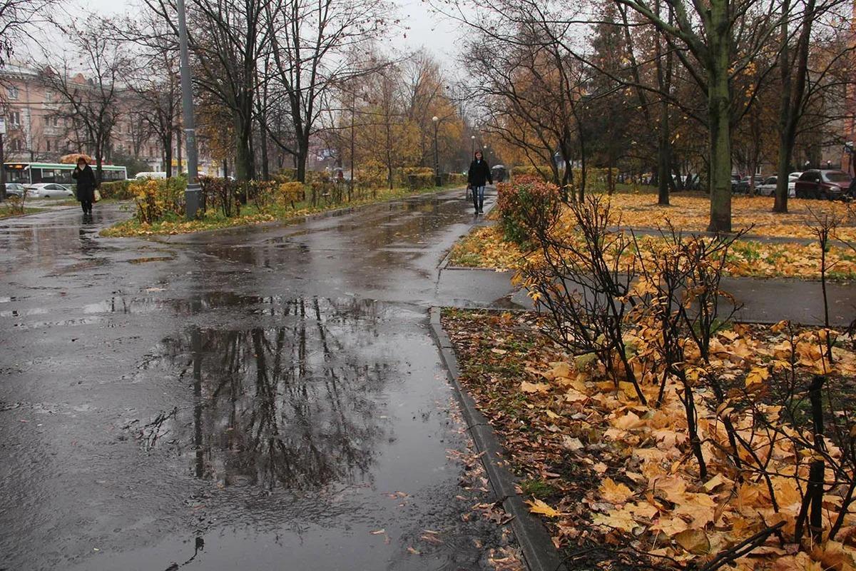 Прогноз погоды в Москве с 13 по 20 сентября 2019: погода от гидрометцентра на каждый день, подробно