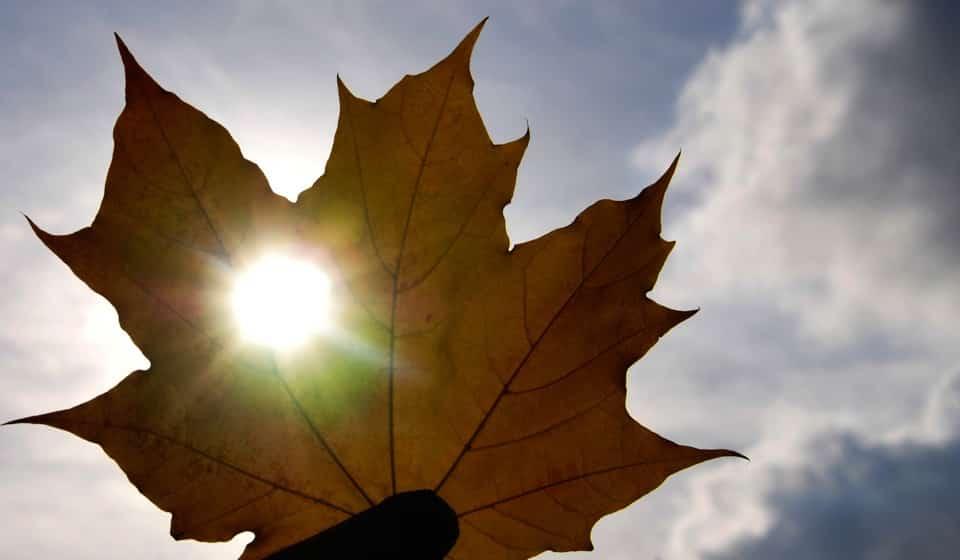 Осеннее равноденствие: когда будет в сентябре 2019, как отпраздновать день осеннего равноденствия в 2019 году