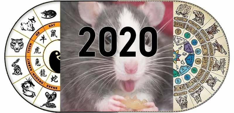 2020 год какого животного по гороскопу: в каком цвете встречать Новый год