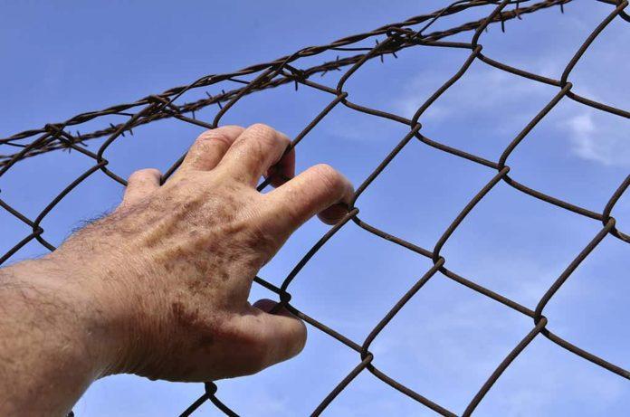 Когда будет следующая амнистия: кто попадает под амнистию. Амнистию к 75-летней годовщине Победы может поддержать президент