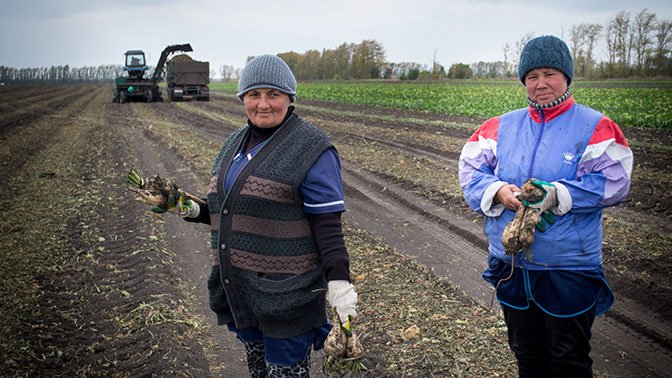 Власти одобрили закон о сокращенном рабочем дне для сельских женщин