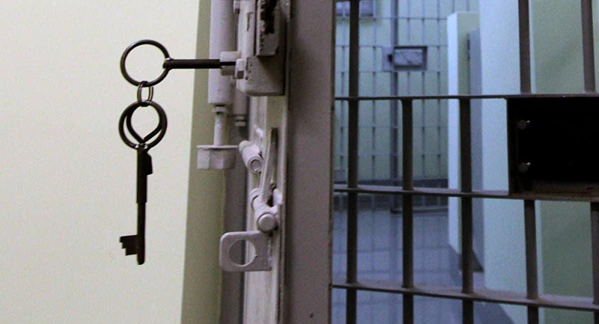 Уголовная амнистия: когда в 2020 году будут объявлена, к какой праздничной дате приурочат, последние новости
