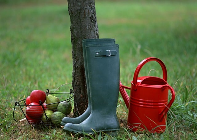 Календарь садовода на октябрь 2019 года: благоприятные дни для работы в огороде октябрь 2019