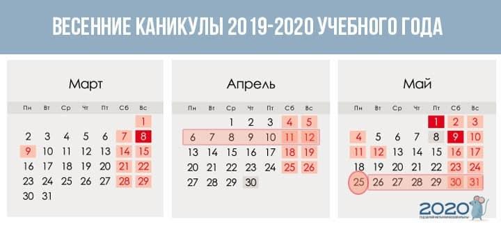 Даты школьных каникул в новом учебном году 2019-2020 года: полное расписание