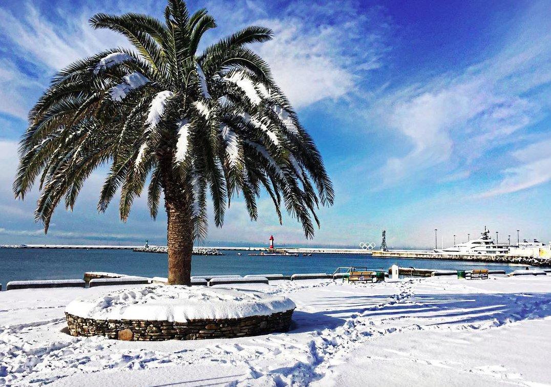 Какая будет погода в Сочи в декабре 2019 - январе 2020