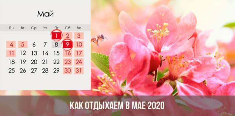 Точные даты Новогодних и майских каникул в 2020 году