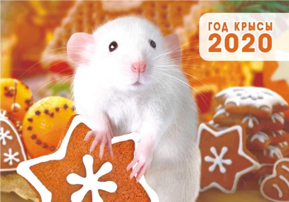Новый 2020 год, какого животного будет по гороскопу