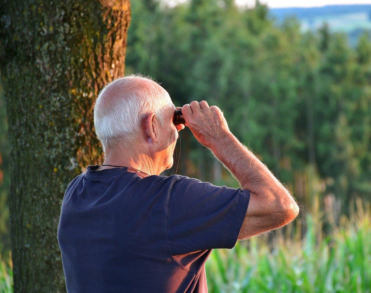 Какая минимальная пенсия в Краснодарском крае будет в 2020 году