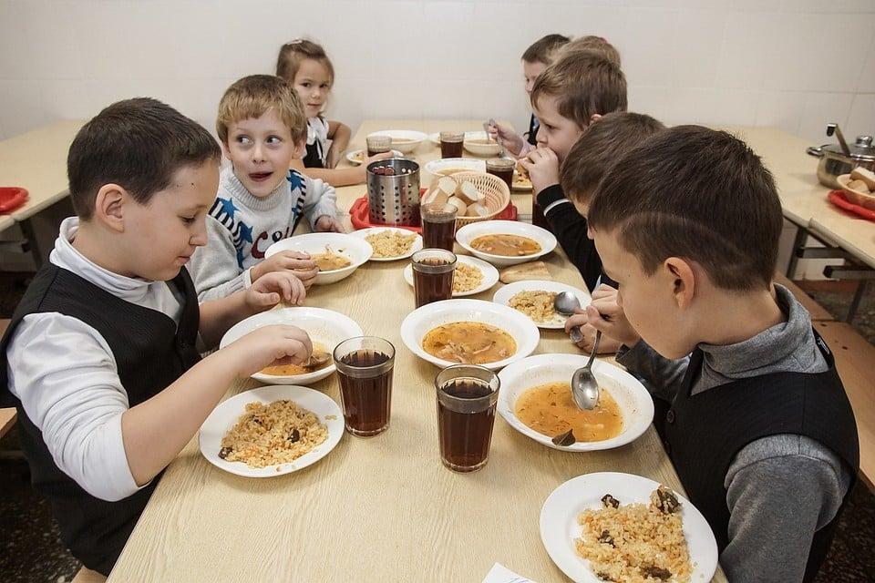 В Тольятти школы и детские сады снабжали испорченным мясом