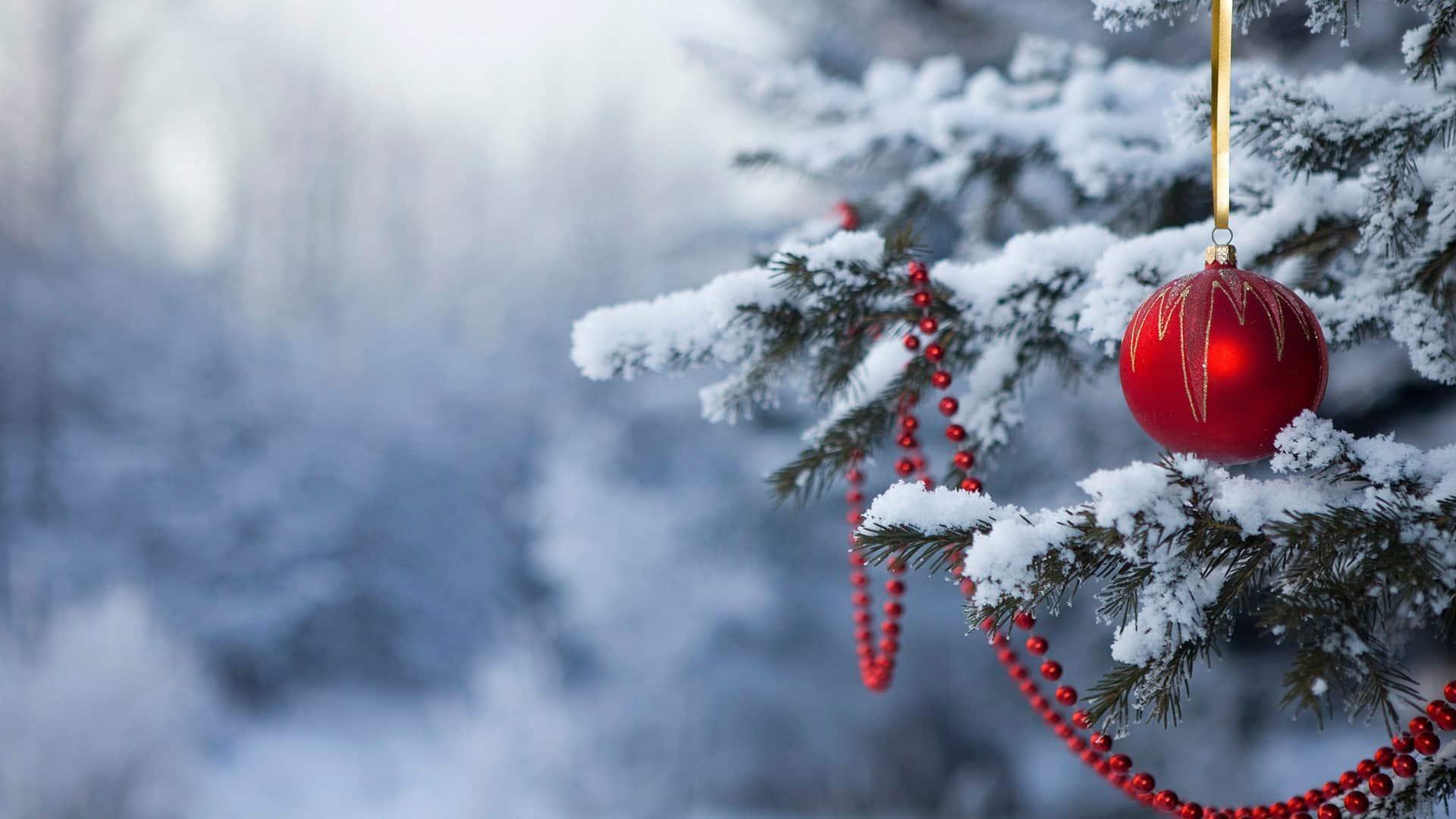 Какая будет погода на Новый год 2020: прогноз для регионов России, какой будет погода зимой 2019-2020, народные приметы