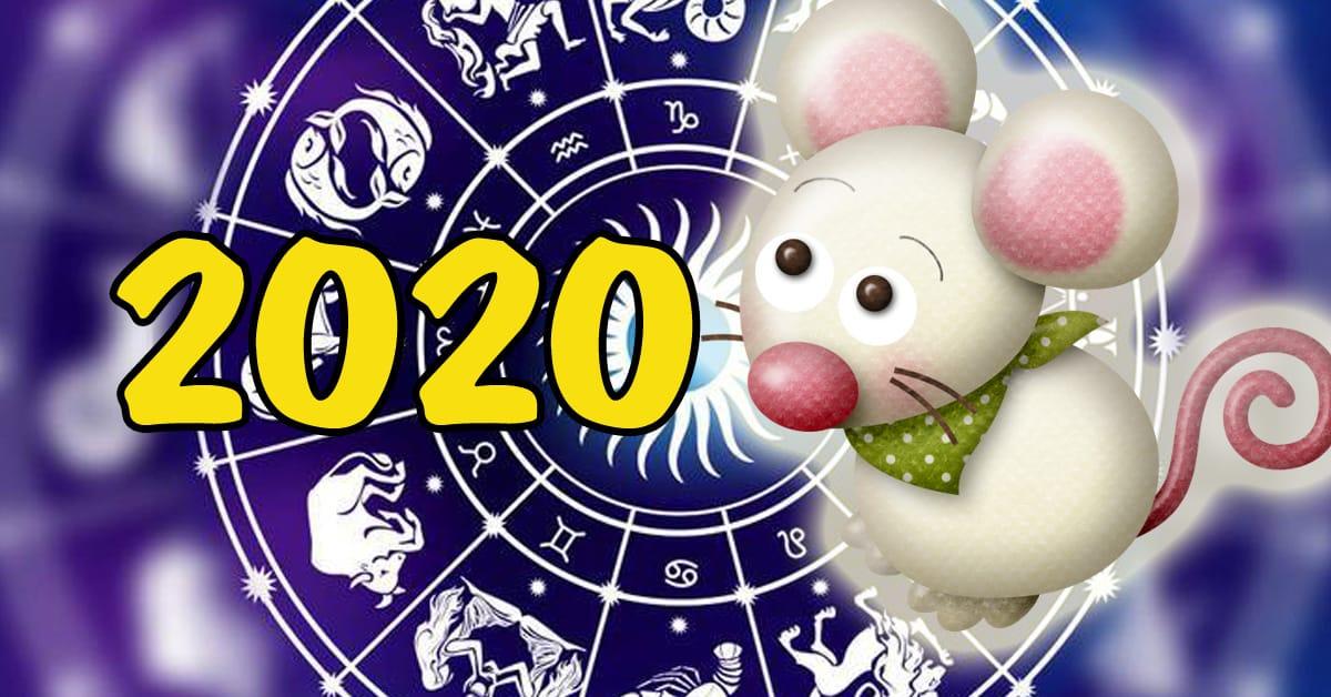 Год крысы в 2020 по китайскому календарю: как правильно встречать
